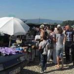 O koridi u Čevljanovićima, Kalesijskim zvucima i tojšićkoj pijaci: Između tradicije i bijega od stvarnosti