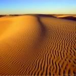 Priča o čovjeku koji je ostavio majku u pustinji