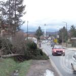 """FOTO: Vjetar u Kalesiji """"čupao"""" drveće i skidao krovove"""
