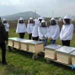 FOTO/ Vrijedna donacije TIKA-e za MSŠ Kalesija: Od sada i praktična primjena stečenog znanja iz pčelarstva