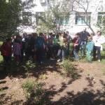 """FOTO/ Kalesijski osnovci posadili cvijeće u školskom dvorištu: Akciju podržao menadžment škole i Udruženj """"Eko Zeleni"""" TK"""