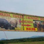 Javna osuda: Korida u G.Kalesiji 9.jula, između Bajrama i godišnjice genocida u Srebrenici, je sramotna i uvredljiva