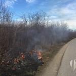 FOTO: Gori nisko rastinje u dolini Spreče