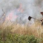 U naselju Horozovina izgorio pomoćni objekat, požar zahvatio šumu