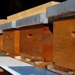 Kalesija: Dvije osobe osobe ukrale sedam košnica sa pčelama